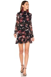 Nicholas French Floral Dress Black