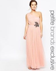 Little Mistress Petite One Shoulder Embellished Waist Tulle Maxi Dress Pink