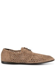 Dolce And Gabbana Perforated Derbies Brown