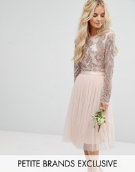 Maya Petite Long Sleeve Sequin Body Nude Pink