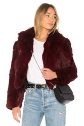 Adrienne Landau Rabbit Jacket With Fox Collar Purple