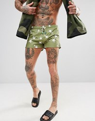 Oiler And Boiler Chevy Swim Short With Star Print Green