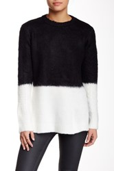 Zoa Colorblock Fuzzy Sweater Black