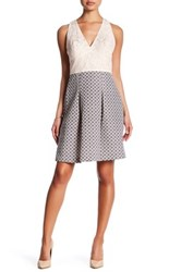 Adrianna Papell Halter Neck Fit And Flare Dress Pink