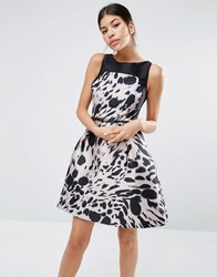 Coast Desdamonda Dress In Abstract Animal Print Multi