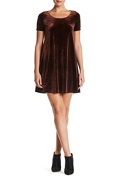Painted Threads Short Sleeve Velvet Dress Brown