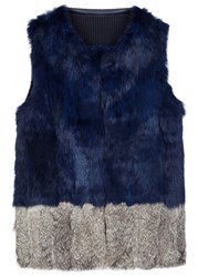 Alpha Navy Fur And Wool Gilet