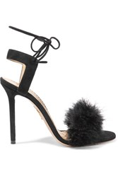 Charlotte Olympia Salsa Feather Embellished Suede Sandals Black