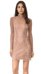 Alexander Wang Mock Neck Lace Mini Dress Terra