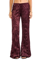 Band Of Gypsies Velvet Flare Burgundy
