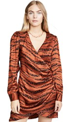 Anine Bing Penelope Dress Zebra