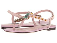 Dolce And Gabbana Suede Thong Sandal With Pineapple Detail Light Pink