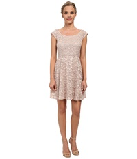 Alejandra Sky Glitter Stretch Lace Skater Dress Blush Women's Dress Pink