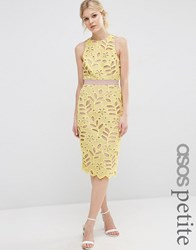 Asos Petite Premium Lace Midi Pencil Dress With Contrast Seams Yellow
