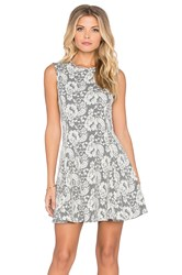 Bishop Young Lace Skater Dress Gray