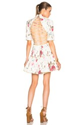 Zimmermann Mischief Corset Lace Dress In Neutrals Floral