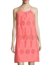 Max Studio Lace Inset Sleeveless Dress Spice Coral