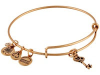 Alex And Ani Skeleton Key Charm Bangle Rafaelian Gold Finish Bracelet