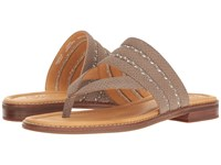 Sperry Gold Cup Flat Abbey Anne Greige Women's Sandals Brown