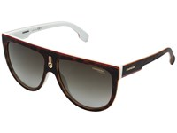 Carrera 1000 S Havana White With Brown Gradient Lens Fashion Sunglasses