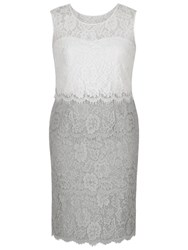 Chesca Scallop Layered Lace Dress Grey Ivory