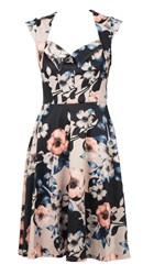 Feverfish Flared Printed Dress Black
