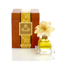 Agraria Petite Airessence Golden Cassis 50Ml