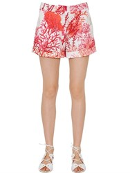 Blugirl Coral Printed Cotton Satin Shorts