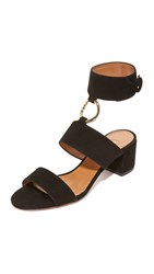 Aquazzura Safari City Sandals Black