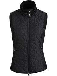 Daily Sports Harley Quilted Gilet Black