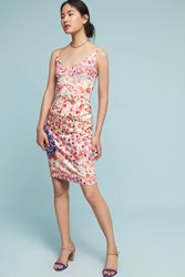 Anthropologie All In Bloom Sheath Dress Red Motif