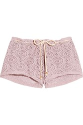 Eberjey Boho Beautiful Andrea Crocheted Bikini Shorts Purple