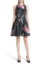 Ted Baker Women's London Sarahe Floral Fit And Flare Dress Black