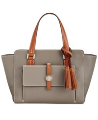Dooney And Bourke Cambridge Small Shopper Taupe