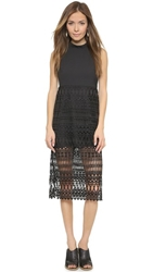 Endless Rose Lattice Lace Dress Black
