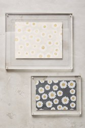 Anthropologie Acrylic Hanging Frame Clear