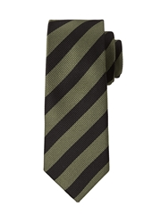 Forever 21 Classic Striped Neck Tie