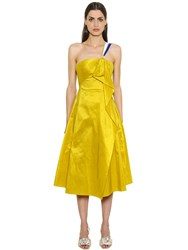 Peter Pilotto Ruffled Shiny Taffeta Bustier Dress