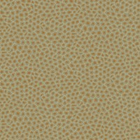 Cole And Son Senzo Spot Wallpaper 109 6029