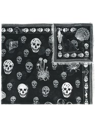 Alexander Mcqueen Shipping And Skull Print Scarf Black