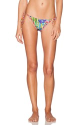 Agua Bendita Tropical Destiny Bedito Bamboo Bikini Bottom Blue