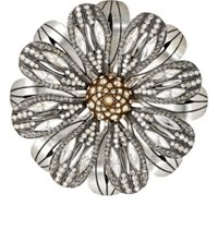 Lanvin Women's Floral Brooch Tan