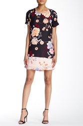 Daniel Rainn Floral Print Shift Dress Petite Multi
