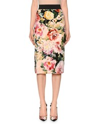 Dolce And Gabbana Poppy Print Stretch Cady Midi Skirt Multi Pattern