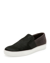 Lanvin Calf Hair And Suede Skate Shoe Black
