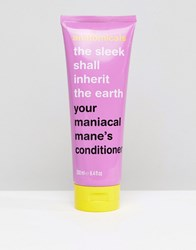 Anatomicals The Sleek Shall Inherit The Earth Conditioner 250Ml Clear