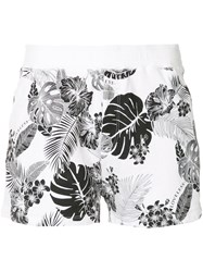 Loveless Palm Print Shorts White