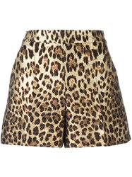 Red Valentino Leopard Print Shorts Brown