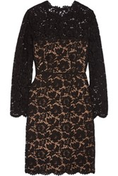 Valentino Cotton Blend Corded Lace Dress Black
