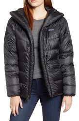 Patagonia Fitz Roy Water Repellent 800 Fill Power Down Parka